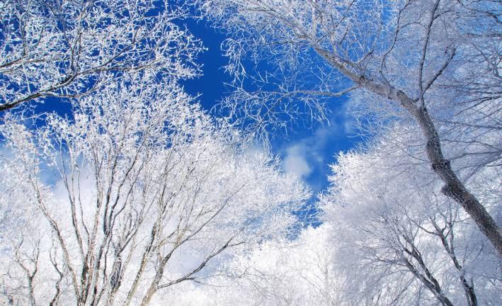 冬の空気は運気アップの前触れ??